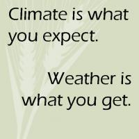 climate is what you expect