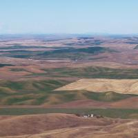 Palouse from Kamiak Butte -Roger Nelson